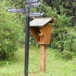 Notruftelefon im Steinwald