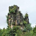 Im Steinwald