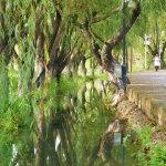 Rundgang durch Shaxi
