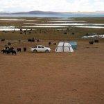 Zelte für die Hirten