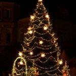 Weihnachtsbaum vor Schloss Bückeburg