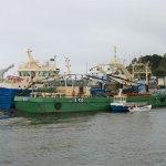 Im Hafen von Greencastle