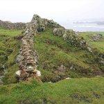 Steinmauern am Wegesrand