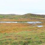 Feuchte Gegend am Malin Head